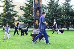 šuniukų pasirodymas